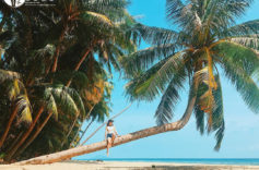 Traveling to Saigon Kien Giang – cheap attractive